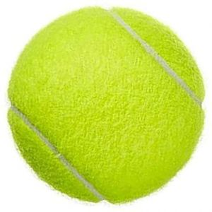 SPICOM 12 Pieces Table Tennis Ball For Practice Dog Toys Indestructible Thrower Tour Sports Games With Mesh Carrying Bag