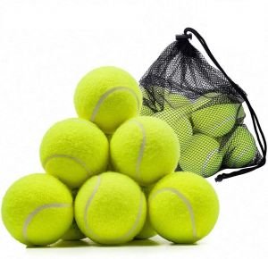 SPICOM 24 Pieces Table Tennis Ball For Practice Dog Toys Indestructible Thrower Tour Sports Games With Mesh Carrying Bag